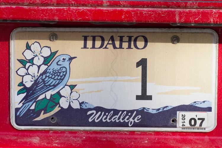 The Larson Family license plate.