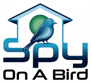 spy on a bird logo-2s